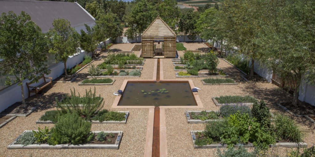 Healing tea ritual garden activities at babylonstoren cape winelands