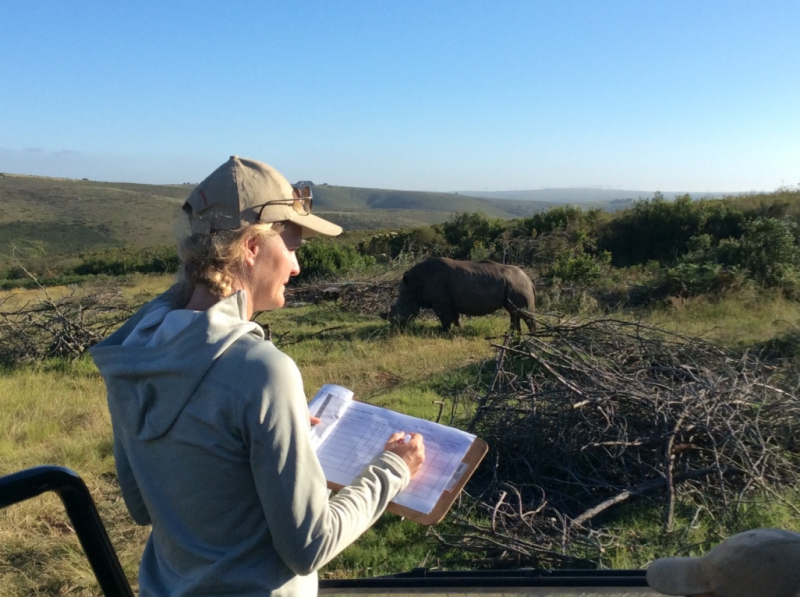 Wildlife Conservation Safaris South Africa: Make a Difference by Participating in Conservation on Your South African Safari