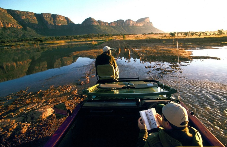 13 Amazing Malaria-Free Safaris in South Africa