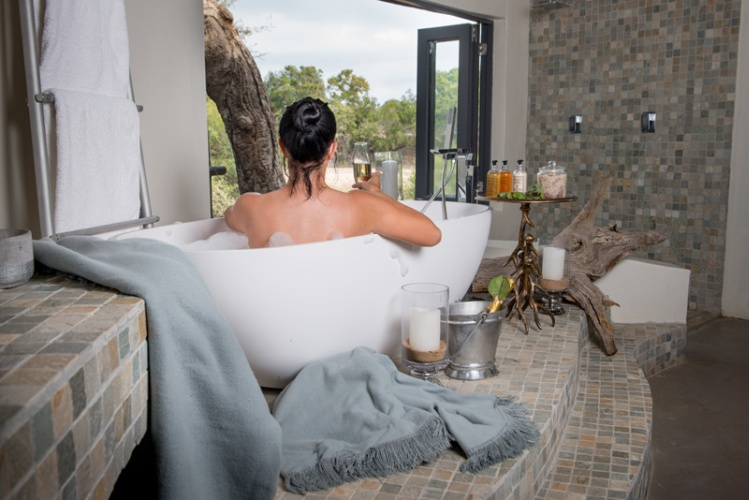 best top luxury safari experiences in South Africa