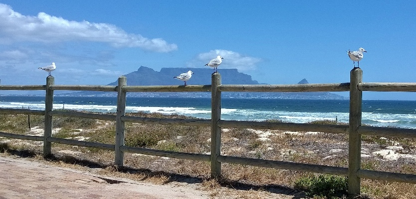 Reasons to visit South Africa Cape Town Table Mountain