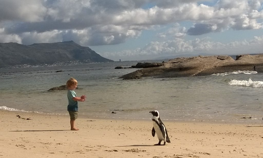 Reasons to visit South Africa beach holidays