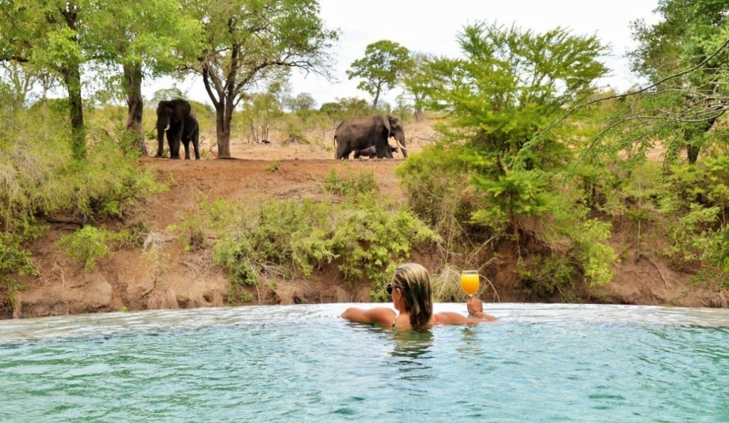 luxury safari holidays south africa