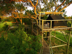wilderness sleepouts at Plains Camp Kruger National Park South Africa