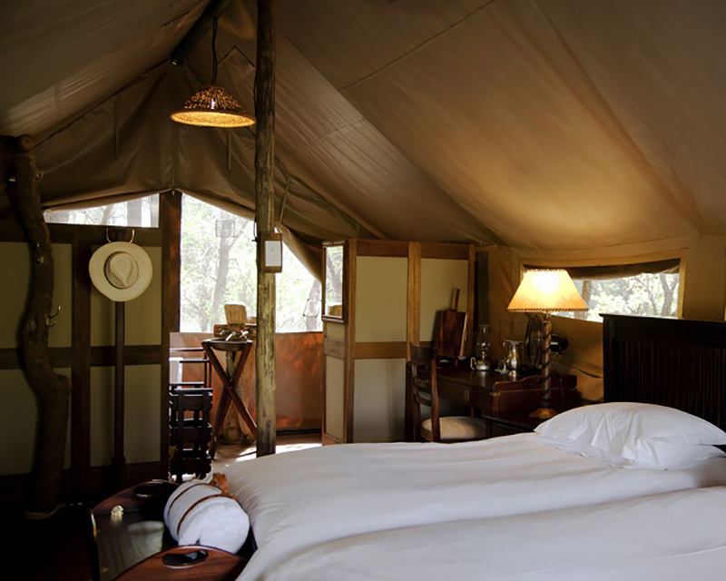 tented safari and wilderness sleepout kruger national park south africa
