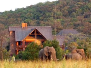 affordable safari accommodation limpopo for families and small groups