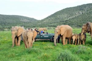 Eastern Cape South Africa attractions