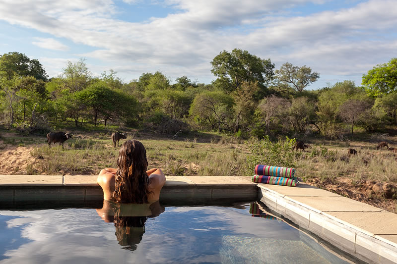 Thornybush Game Reserve: Heavenly Lodges for Your Top-Class South African Safari Holiday