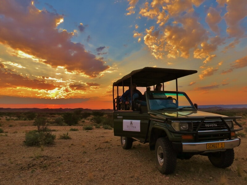 A Day in the Life of… Tutwa Desert Lodge: Your Unforgettable Encounter with the Green Kalahari