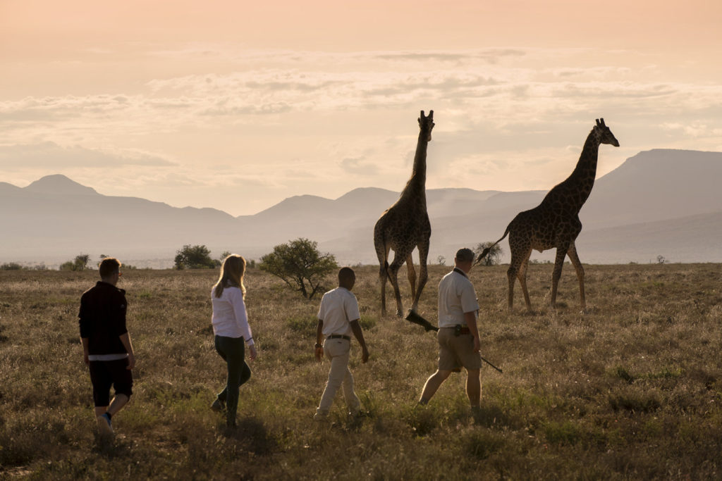walking and camping safari eastern cape south africa