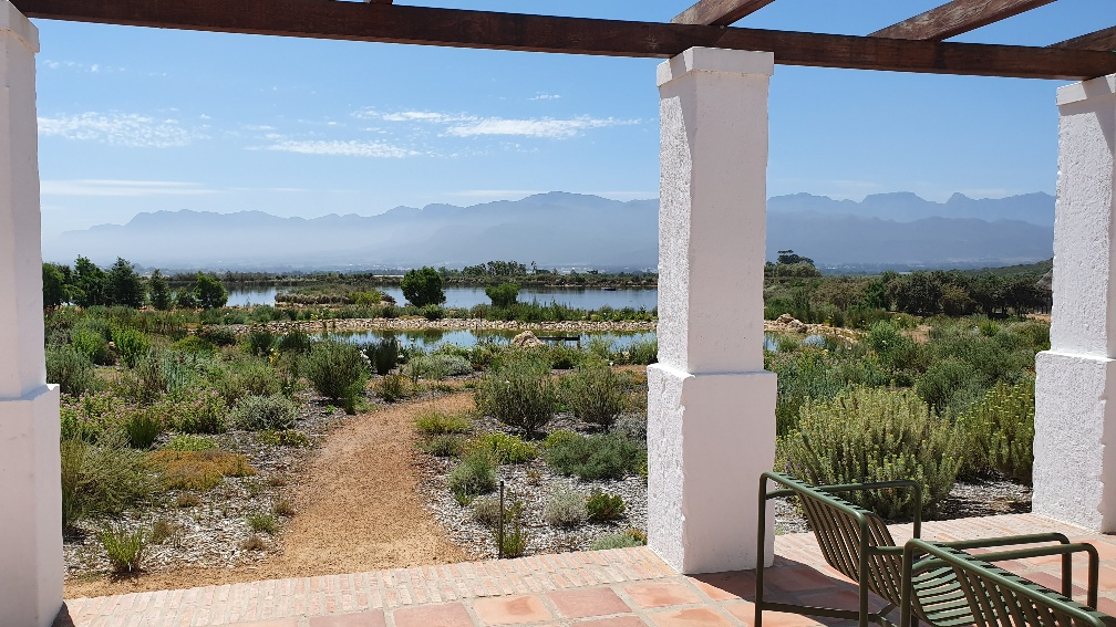 Babylonstoren: A Magical Farm Stay in Cape Wine Country Second to None
