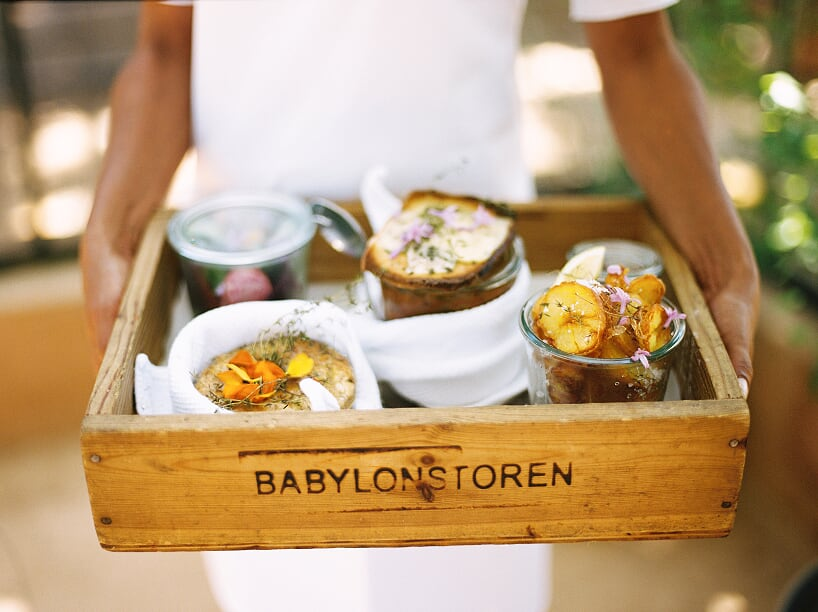 babylonstoren luxury wine farm