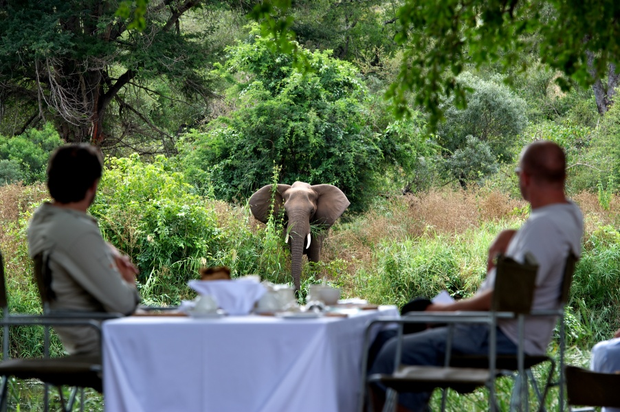 luxury safari south africa photo diary