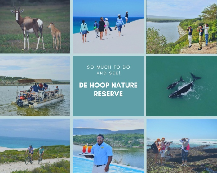 20 Reasons to Visit De Hoop Nature Reserve