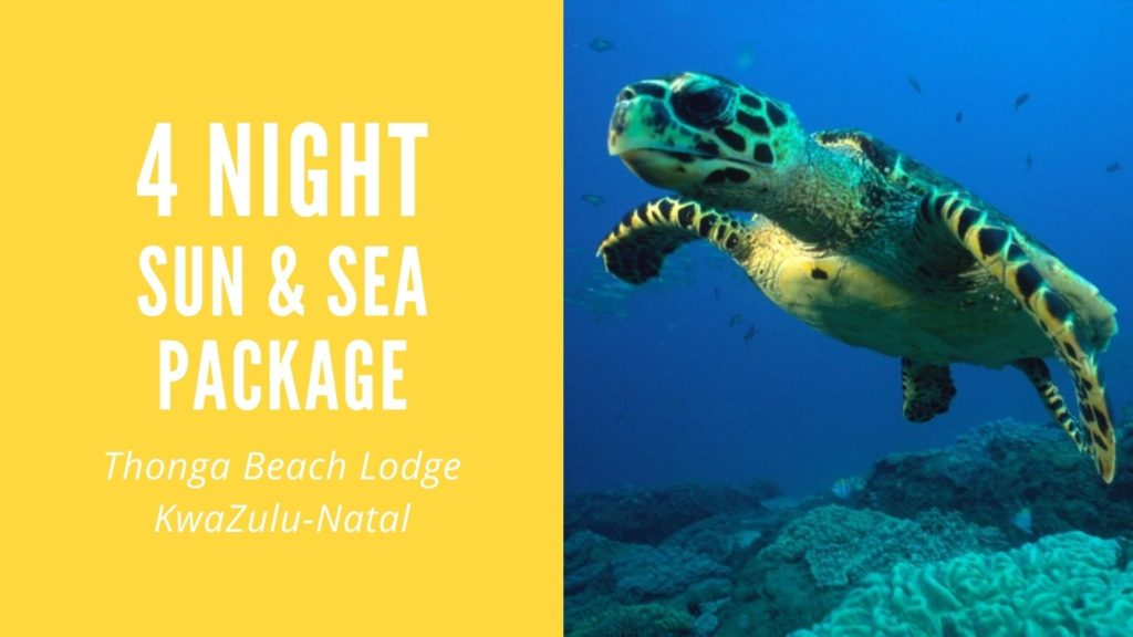 4-Night Sea & Sun Getaway Package at a KwaZulu-Natal Wilderness Beach Lodge