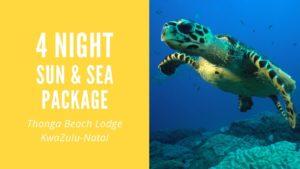 special package wilderness beach getaway kwazulunatal