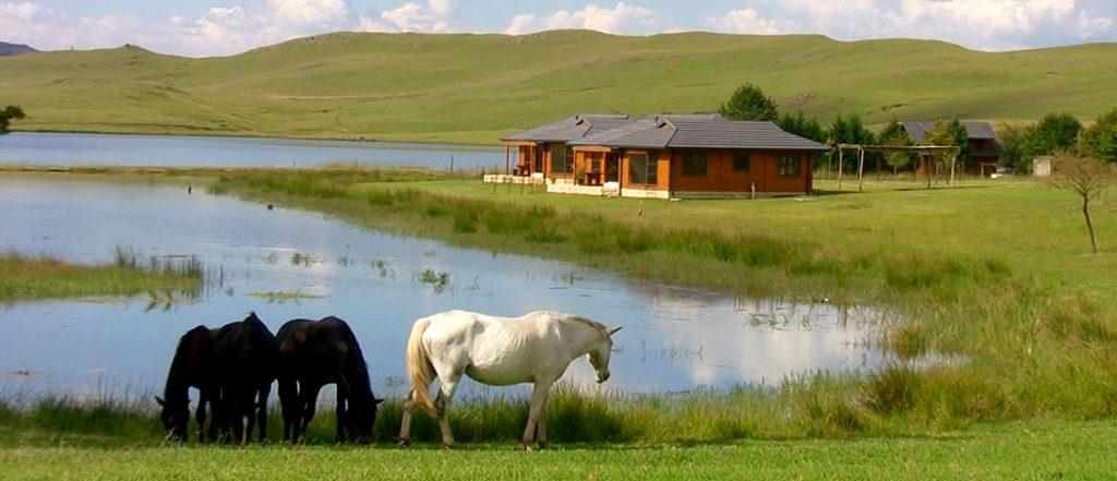 horse riding getaways south africa