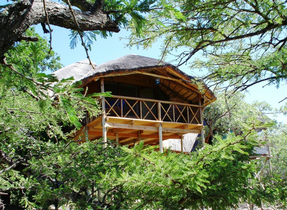 In the Treetops: A Fabulous Treehouse Safari Getaway in Limpopo